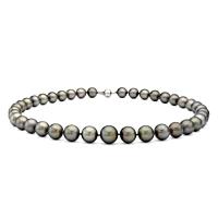 Grey Tahitian Pearls